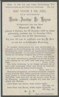 BP De Keyzer (Nukerke 1848-1914) - Colecciones