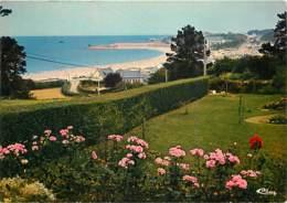 22 - Trévou - Tréguinec - La Plage De Trestel - Fleurs - CPM - Voir Scans Recto-Verso - Frankrijk