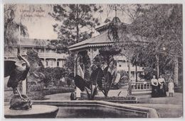 LIMON (Costa Rica) - Parque Y Gran Hotel - Costa Rica