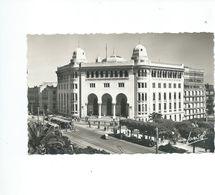 ALGER   LA POSTE - Algiers
