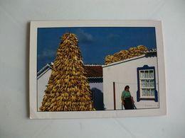 Postcard Postal Portugal Açores Ilha Terceira Casa Tradicional E Burra De Milho - Açores