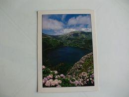 Postcard Postal Portugal Açores Ilha Das Flores Cratera Vulcânica Da Lagoa Verde - Açores