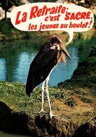 CPM - Parc ZOOLOGIQUE Des CONDEMINAIS - ROMANECHE-THORINS - CROCODILE - Edition Combier - Other