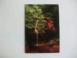 Postcard Postal Portugal Açores Ilha De S. Miguel Ribeira Grande Cascatas - Açores