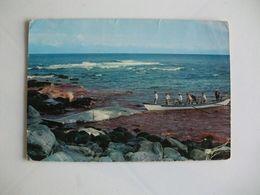 Postcard Postal Portugal Açores Ilha De S. Miguel Caça à Baleia - Açores