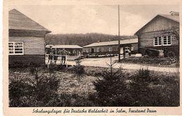 Schulungslager Für Deutsche Waldarbeit In Salm, Forstamt DAUN - Daun
