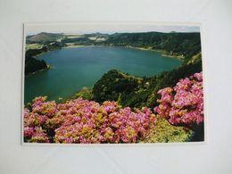 Postcard Postal Portugal Açores Ilha De S. Miguel Lagoa Das Furnas Foto - Açores