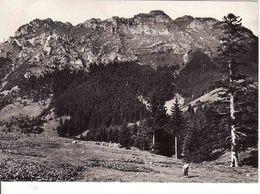 Slovakia, Nízke Tatry 1962, Ohnište 1539 M, Svätojanska Dolina - Puchalky, Used - Slowakije