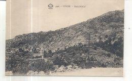 449. Corse, Balogna - France