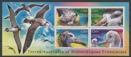 "TAAF Bloc YT 24 BF "" Oiseaux, Albatros D'Amtersdam "" 2010 Neuf** - Blocks & Sheetlets"