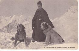 J.J 8479 Grand St Bernard Maître Et Serviteurs - Chiens