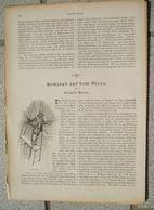 083 Hochseejagd Ozean Artikel Mit 8 Bildern Von 1893 !! - Books, Magazines, Comics