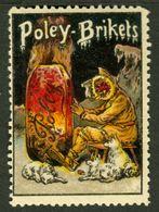 """Bernburg Saale Sachsen-Anhalt 1913 """" POLEY Briketts """" Art Deco Vignette Cinderella Reklamemarke - Erinofilia"""