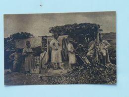 Serbia Srbia 701Kajmak-Čelan 1916 Foto Albium Vojni Svecenik Šukovic Artiljeria Topništvo Ed Jakob Kapponn - Serbie