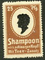 "Berlin Tempelhof ~1913 "" Schwarzkopf Shampoon "" Art Deco Vignette Cinderella Reklamemarke - Erinofilia"
