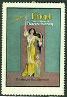 """Jugendstil 1913 """" Schöbels TRICHOGEN Vornehmstes Haarpflegemittel """" Art Deco Vignette Cinderella Reklamemarke - Erinofilia"""