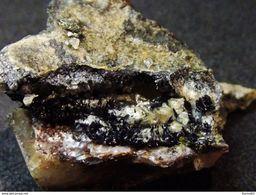 Montroseite (2 X 1.7 X 1.4 Cm.) - Prachovice - Zelezné Hory - Czechia - Minerals