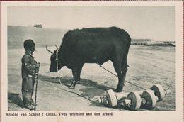 Old Mission Missionary Postcard China Chine Missie Scheut Native Child Boy Garcon Enfant West Mongolia Mongolie - Cina
