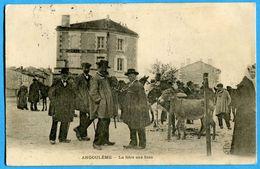 16 - Charente – Angouleme – La Foire Aux Anes (N0290) - Angouleme