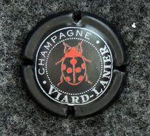 Capsule CHAMPAGNE - VIARD LANIER Coccinelle - Sin Clasificación