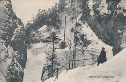 Les Rasses  - Sentier De Covatannaz- Scan Recto-verso - VD Vaud