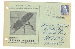 IBOS (65)  Carte Commerciale Publicitaire Apiculture Ruches Abeilles Henri MULLER - Francia