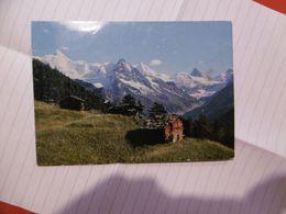 St Luc - L'alpage Des Moyes Avec Le Rothorn, Obergabelhorn Et Le Cervin - VS Valais
