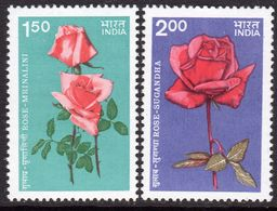 India 1984 Roses Set Of 21, MNH, SG 1141/2 (D) - Nuovi