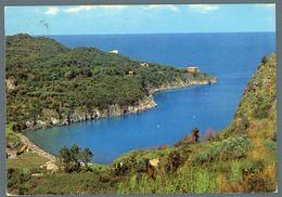 °°° Cartolina - Ischia Lacco Ameno Baia Di S. Moniano Viaggiata °°° - Napoli