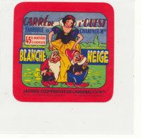 Y 376  / ETIQUETTE DE FROMAGE   CARRE DE L'OUEST BLANCHE NEIGE   LAITERIE  DE CHADENAC   CHARENTE M. - Cheese