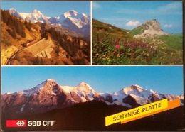 Ak Schweiz - Schynige Platte - Berglandschaft - Eisenbahn,railway - BE Berne