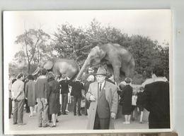 Photo In The Zoo   Sx343-353 - Altri