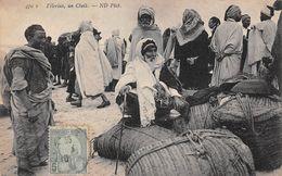 Tunisie - Pélerins - Un Cheik - Tunisie