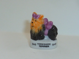 FEVE LES CHIENS, LE YORKSHIRE TERRIER, Os - Animals