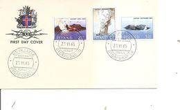 Volcans ( FDC D'Islande De 1965 à Voir) - Volcanos