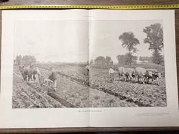 1906 ILL LES TRAVAUX D AUTOMNE HOMMES DANS LES CHAMPS LABOURAGE - Collections