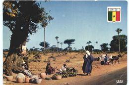 CARTE POSTALE DU SENEGALE - SCENE DE VIE SENEGALAISE - Sénégal