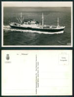 BARCOS SHIP BATEAU PAQUEBOT STEAMER [BARCOS # 02526 ] - MV WILLEMSTAD KNSM - Paquebots