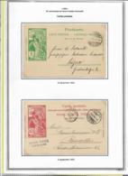 TIMBRES SUISSE, ENTIER, CARTES DE L U.P.U., AYANT CIRCULE, TIMBRE DE 1900 - Usados