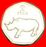· HEPTAGON: BOTSWANA ★ 2 PULA 2004! LOW START ★ NO RESERVE! - Botswana