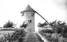 ¤¤   -   ILE De NOIRMOUTIER   -   BARBATRE   -    Moulin De Bellevue  -   ¤¤ - Ile De Noirmoutier