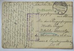 Rußland Kriegsgefangenenpost 1916 Fallersleben Nach  Nikolsk-Ussurijski (52625) - Weltkrieg 1914-18