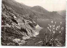 Corse. Canari - La Mine D'amiante.   -  CPSM GF  Edit  Miramont  2B   Postée 1961 - France