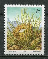 South Africa Mi# 518 X (SACC 424b) Postfrisch/MNH - Flora Protea - Large Variety - RSA Omitted - África Del Sur (1961-...)