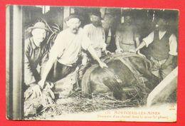 71 Montceau Les Mines 1915 Gros Plan Descente D'un Cheval Animée édit JC Autun 135 Dos Scanné CDF - Montceau Les Mines