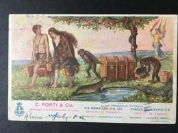 """NAPOLI,NAPLES,NEAPEL - Cart. Publicitaria, """" C.Forti, Fabbricanti Marocchineria Di Lusso """" ......ed. Richter - Napoli (Nepel)"""
