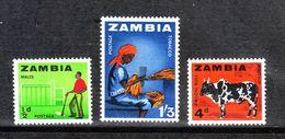 Zambia   - 1964.  Raccolta Mais, Tabacco. Corn And Tobacco Harvest. Zebù. MNH - Agricultura