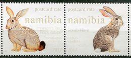 Namibia Mi# 1561-2 Postfrisch/MNH - Fauna Rabbits - Namibia (1990- ...)