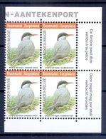 BELGIE * Buzin * Nr 4306 * Franse + Vlaamse  Tekst * Postfris Xx * WIT PAPIER - 1985-.. Pájaros (Buzin)