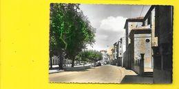 TARALLA Rara Av. Fernandez Paseo Calatayud (Garrabella) Espagne - Navarra (Pamplona)